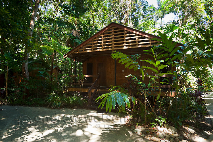 Rainforest cabin at PK's Jungle Village.  Cape Tribulation, Daintree National Park, Queensland, Australia