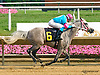 Taylors Touchof Class winning at Delaware Park on 7/28/15