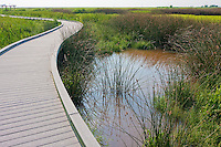 Nature walkway in Sabine National Wildlife Refuge, Louisiana.