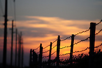 (Mesa, Arizona) The sunset color create a dramatic silhouette of a barbed wire fence. The first patent for barbed wire in the United States was issued in 1867 to Lucien B. Smith of Kent, Ohio, who is considered the inventor or barbed wire. Photo by Eduardo Barraza © 2013