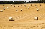 Round straw bales in field of stubble after harvest, summer landscape near Rudge, Marlborough, Wiltshire, England, UK