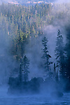 Misty Fall morning along the Yellowstone River, Canyon Region, Yellowstone National Park, Wyoming