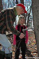 Man drilling hole into sugar maple tree to install tap while young girl observes