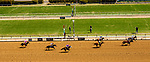 04-06-19 Wood Memorial Stakes Day