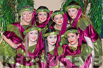 performing in Robin Hood panto in Killorglin CYMS on Sunday were front row l-r: Sinead Horgan, Alicia Looney, Krystal Cronin. Back row: Geraldine O'Sullivan, Alanna O'Sulivan, Aisling Murphy and Carmel O'Connor
