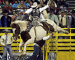 National Western Stock Show and Rodeo 2009