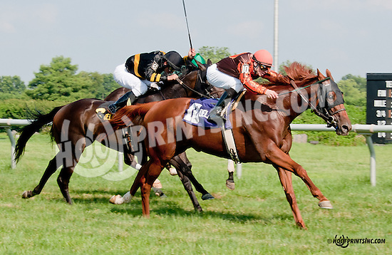Joy winning The Christiana Stakes at Delaware Park on 7/10/13