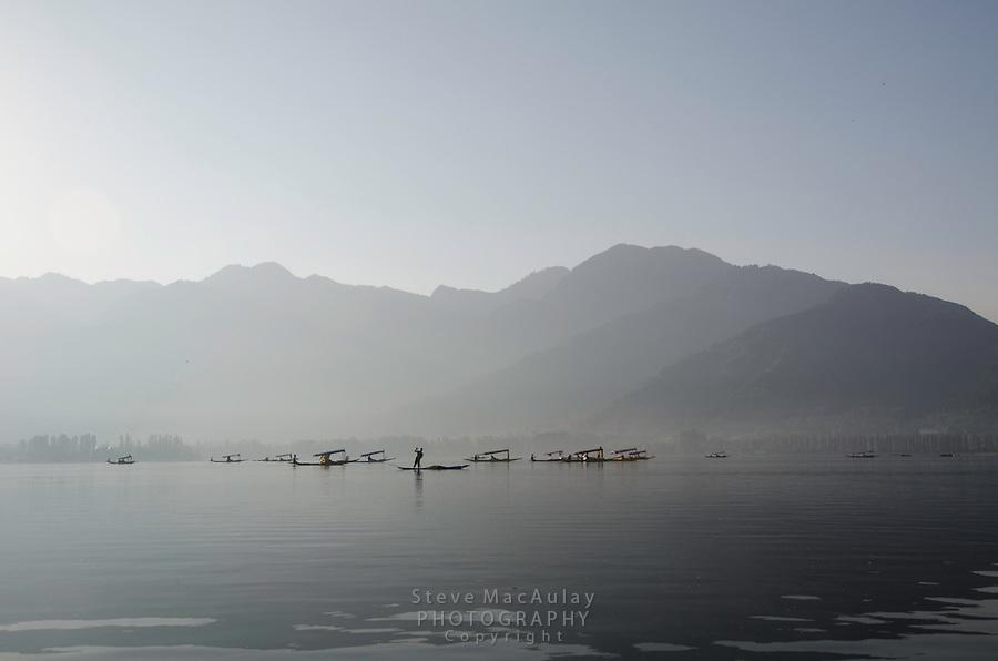 """Traditional """"shikara"""" gondolas at sunrise, Dal Lake, Srinagar, Kashmir, India."""
