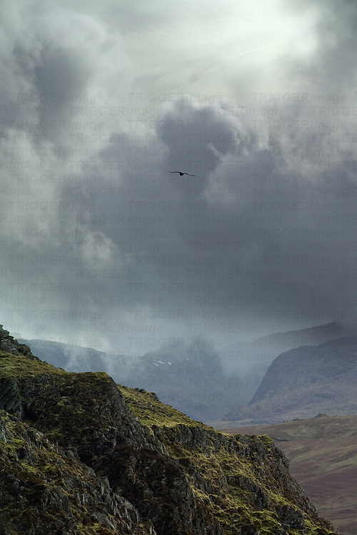 A lone raven among storm clouds over Lake District mountains