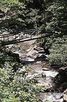 Gebirgsbach, Gebirgs-Bach, naturnaher Bach mit Brücke, Wasser, Bach, Alpen, Kärnten, Österreich