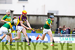Jason Diggins, Kerry, in action against Andrew Shore, Wexford, National Hurling League, Division 1B, Round 3, at Austin Stack Park, Tralee, on Sunday.