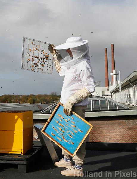 Nederland - Eindhoven - 2017 .  Imkers ( Asha Pogosova  en Alessandra Scalora ) aan het werk op het dak van het Ketelhuis op Strijp-S.  Foto Berlinda van Dam / Hollandse Hoogte