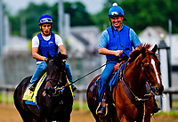 LOUISVILLE, KENTUCKY - APRIL 30: Assistant Trainer Scott Blasi escorts Untrapped to the track during Kentucky Derby and Oaks preparations at Churchill Downs on April 30, 2017 in Louisville, Kentucky. (Photo by Scott Serio/Eclipse Sportswire/Getty Images)