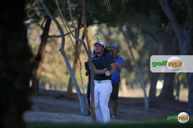 Tyrrell Hatton (ENG) finds the trees on the last during Round Two (Pink Friday) of the 2016 Omega Dubai Desert Classic, played on the Emirates Golf Club, Dubai, United Arab Emirates.  05/02/2016. Picture: Golffile | David Lloyd<br /> <br /> All photos usage must carry mandatory copyright credit (&copy; Golffile | David Lloyd)