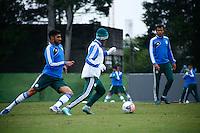 SAO PAULO, SP, 24 DE JULHO DE 2013. TREINO PALMEIRAS.O time do Palmeiras durante treino na Academia de futebol na Barra Funda, zona oeste da capital paulista. FOTO ADRIANA SPACA/BRAZIL PHOTO PRESS.
