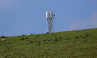 The o2 mobile phone mast at the village of Staylittle (Penffordd-Las in welsh)