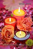 Helga, FLOWERS, nature  photos, DTTH7088,#F# Blumen, Natur, flores, naturaleza