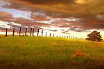 Fenceline, South Dakota