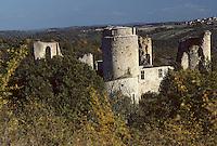 Europe/France/Midi-Pyrénées/46/Lot/Vallée du Lot/Env Cahors: Le château de Rousillon