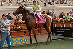 DEL MAR, CA  SEPTEMBER 2:  #8 Ride a Comet, ridden by Drayden Van Dyke in the winners circle after winning the  Del Mar Derby (Grade ll) on September 2, 2018 at Del Mar Thoroughbred Club in Del Mar, CA.(Photo by Casey Phillips/Eclipse Sportswire/Getty ImagesGetty Images
