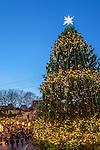 Holiday lights at the Faneuil Hall Marketplace, Boston, Massachusetts, USA