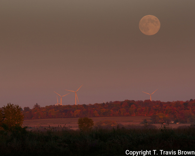 A Full Moon Rises Over Wind Turbines Near Horicon Marsh Wisconsin