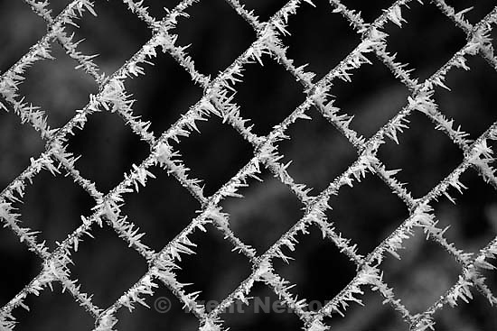 icy chain link fences.<br />