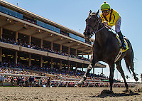 July 20, 2014: Taras Tango with Mike Smith breaks her maiden in track record time of 57.40 for 5 furlongs at Del Mar Race Track in Del Mar CA. Alex Evers/ESW/CSM