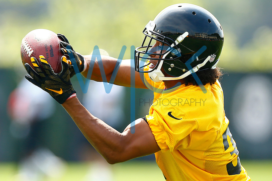 Ross Cockrell #31 of the Pittsburgh Steelers catches a pass during OTA's at the Rooney Sports Complex on the Side Side in Pittsburgh, Pennsylvania on May 31, 2016. (Photo by Jared Wickerham/DKPittsburghSports)