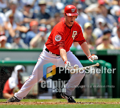 8 June 2008: Washington Nationals' pitcher Garrett Mock attempts to make a bunt during his Major League debut against the San Francisco Giants at Nationals Park in Washington, DC. The Nationals dropped the afternoon matchup to the Giants 6-3 in their third consecutive loss of the 4-game series...Mandatory Photo Credit: Ed Wolfstein Photo