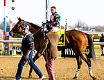 DECEMBER 01, 2018 : Positive Spirit, ridden by Manuel Franco, wins the Demoiselle Stakes at Aqueduct Racetrack on December 24, 2018 in Ozone Park, NY.  Dan Heary/ESW/CSM