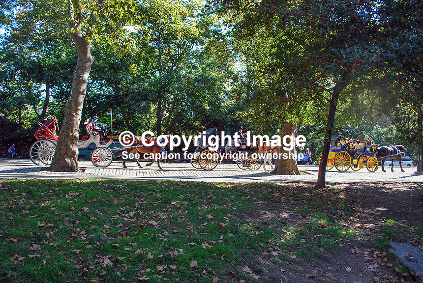 Horse & carriage ride, Central Park, New York, USA, 201110225419..Copyright Image from Victor Patterson, 54 Dorchester Park, Belfast, United Kingdom, UK...For my Terms and Conditions of Use go to http://www.victorpatterson.com/Victor_Patterson/Terms_%26_Conditions.html