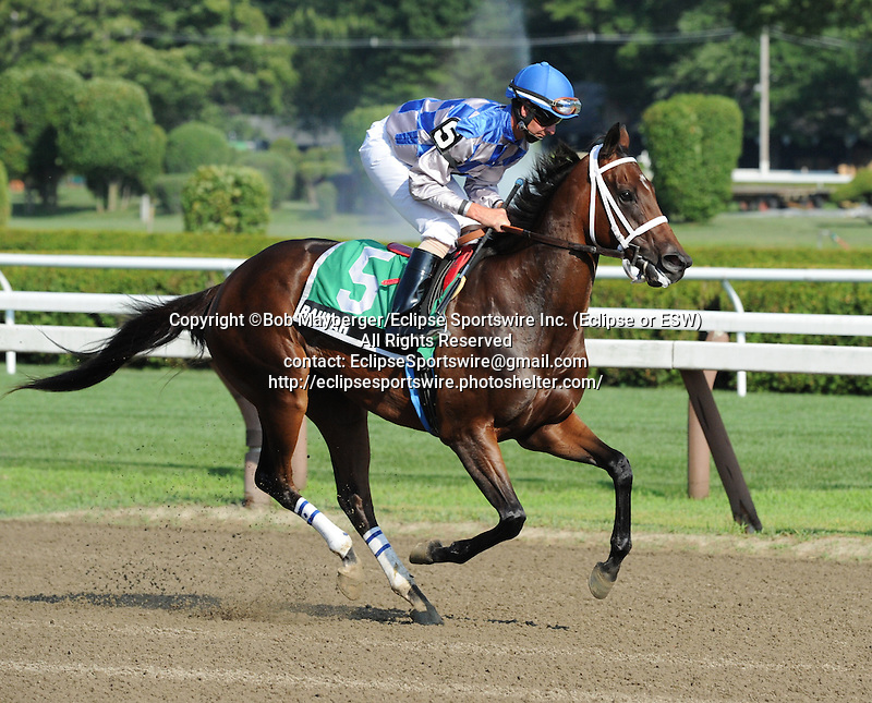 Bahnah (no. 5), ridden by Corey Lanerie and trained by W. Bret Calhoun, and Brazen Persuasion (no. 4), ridden by Rosie Napravnik and trained by Steven Asmussen, dead heat to win the the 95th running of the grade 3 Schuylerville Stakes for two year old fillies on July 19, 2013 at Saratoga Race Track in Saratoga Springs, New York.  (Bob Mayberger/Eclipse Sportswire)