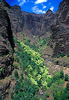 Aerial of Waimea canyon with green lush foliage, Kauai