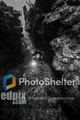 23 July 2015: SCUBA Diver Sally Herschorn explores a ravine at Main Street, on the North Shore of Grand Cayman Island. Located in the British West Indies in the Caribbean, the Cayman Islands are renowned for excellent scuba diving, snorkeling, beaches and banking.  Mandatory Credit: Ed Wolfstein Photo *** RAW (NEF) Image File Available ***