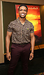 "L. Steven Taylor attends the Broadway screening of the Motion Picture Release of ""The Lion King"" at AMC Empire 25 on July 15, 2019 in New York City."
