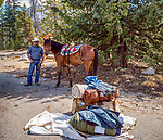 Nephew Brian holding one of the pack horses. Sierra National Forest, on the western slope of the Sierra Nevada, California