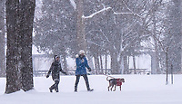 """It was still and quiet for a perfect walk through Canatara Park on a snowy day. Ann McKinley, left and Gail Nisbet, walking her dog Heidi, make their way through the park.""""We're fortunate to have a place like this to walk,"""" said Ann MacKinlay."""