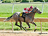 Awesome Caro winning at Delaware Park on 9/23/13