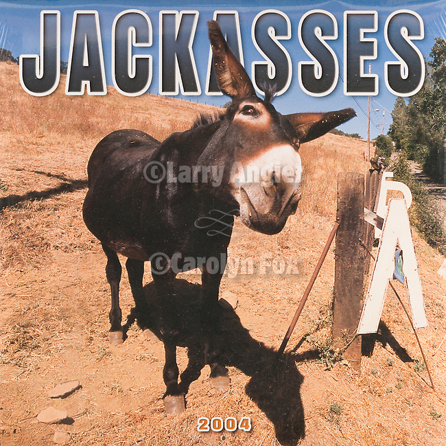 Published photography by Larry Angier..Jackasses 2004 Calendar cover, Browntrout Publishers