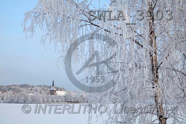 Carl, CHRISTMAS LANDSCAPE, photos(SWLA3903,#XL#) Landschaften, Weihnachten, paisajes, Navidad