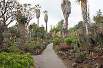 Desert Garden, Huntington Gardens, California, USA