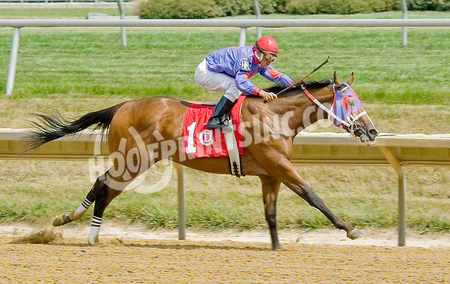 Run Like a Raven winning at Delaware Park on 7/12/12