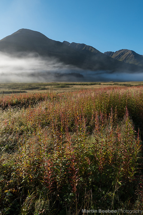 Misty meadow and mountains at Turnagain Pass, Kenai Penninsula, Alaska