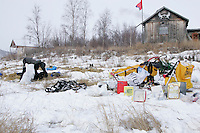 Thursday March 8, 2007   ----  Grass peaking through indicates a very low snow year at the half-way ghost town of Iditarod as Mitch Seavey feeds his team.