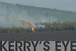 The firemen can only watch as the gorse fire rips through forestry at Coolick, the fire ripped through Kilcummin and Coolick bogs on Tuesday afternoon destroying over six miles of forest and and bog