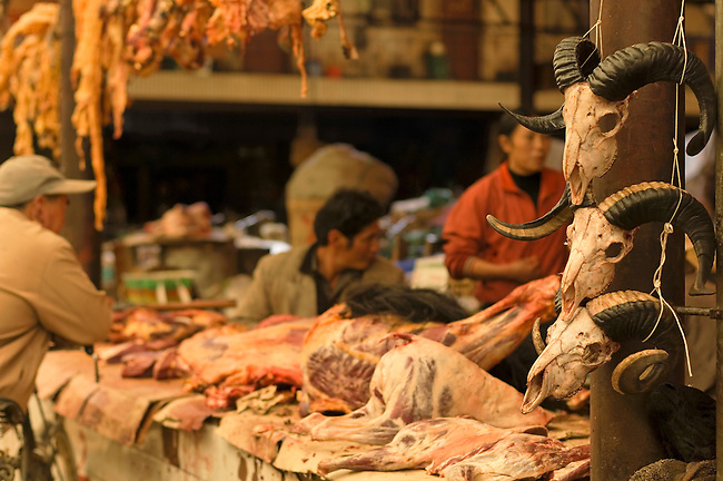 Asia; China; Yunnan Province; Zhongdian District; Tibetian Cultural Area, market, skull