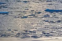 pancake ice, edge of pack-ice, Arctic Ocean, Spitsbergen, Svalbard, Svalbard and Jan Mayen, Norway, Europe