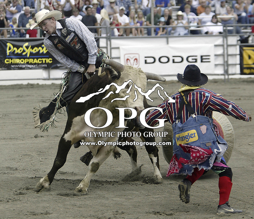 "PRCA Rodeo Bull Rider Matt Austin ranked 7th in the world riding ""Out of Here"" during the PRCA 2004 Extreme Bulls competition in Bremerton, WA."