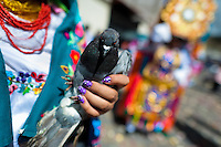 A dancer (danzante) holds a dove in the religious parade within the Corpus Christi festival in Pujilí, Ecuador, 10 June 2012. Every year in June, thousands of people gather in a small town of Pujili, high in the Andes, to celebrate the Catholic feast of Corpus Christi. Introduced originally during the Spanish conquest of South America, this celebration merges Catholic rituals of Holy Communion with the traditional Andean harvest and sun festivities (Inti, the Inca sun god). Women dancers perform wearing brightly colored costumes while men dancers wear chest ornaments and heavy elaborate headdresses adorned with mirrors, jewelry, or natural items (shells). Being a dancer in the Corpus Christi ceremonial parade (El Danzante) is considered an honour and a privilege by the indigenous people in Ecuador.
